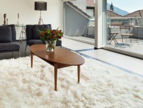 Dywany Castorama – na co powinniśmy zwrócić uwagę przy ich zakupie?