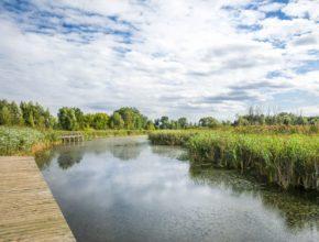 Jezioro Zgorzała. Atrakcja warszawskiego Ursynowa