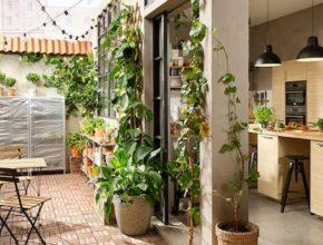 Ikea ogród – masa inspiracji ogrodowych