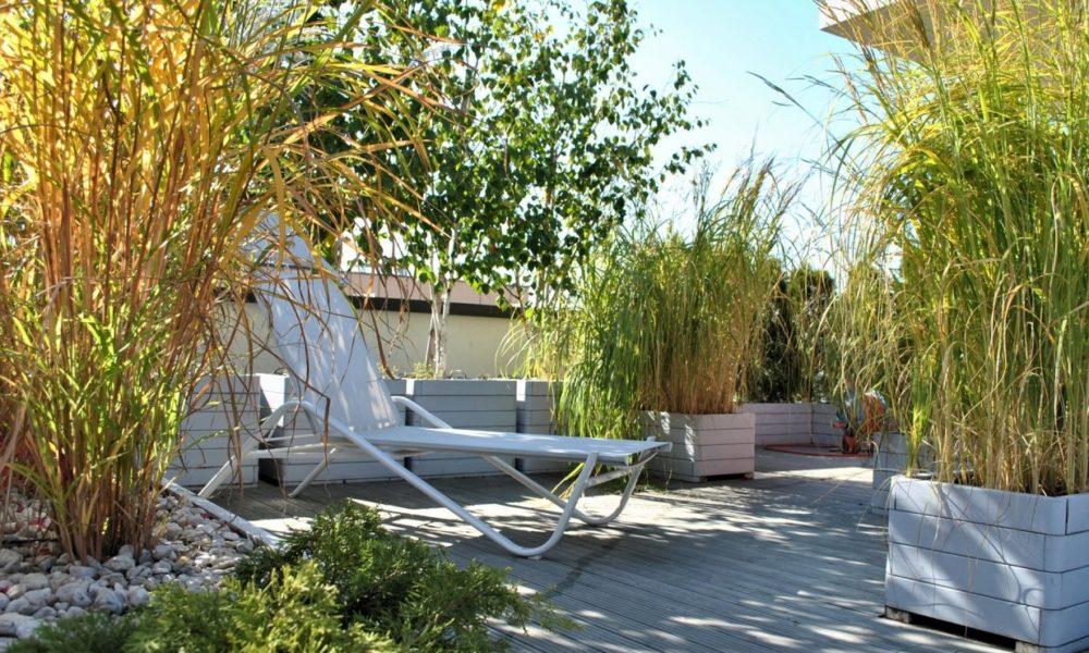 Które trawy ozdobne najlepiej rosną na balkonie?